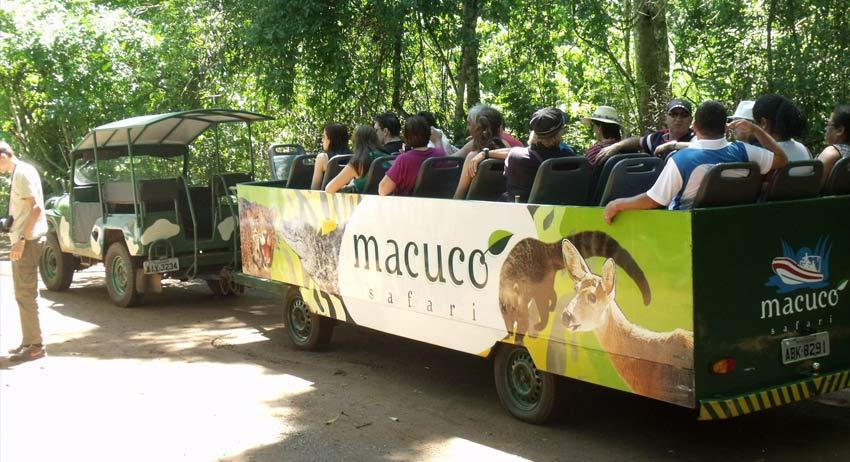 Macuco Safar3